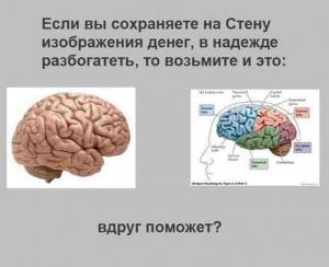 шутка_мозг