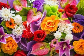 Просто цветы.